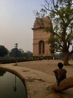 Sitting on a tree before India Gate, New Delhi